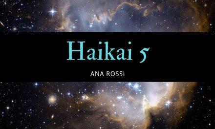 haikai 5
