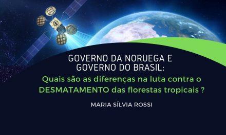 Governo da Noruega e Governo do Brasil – quais são as diferenças na luta contra o desmatamento das florestas tropicais?