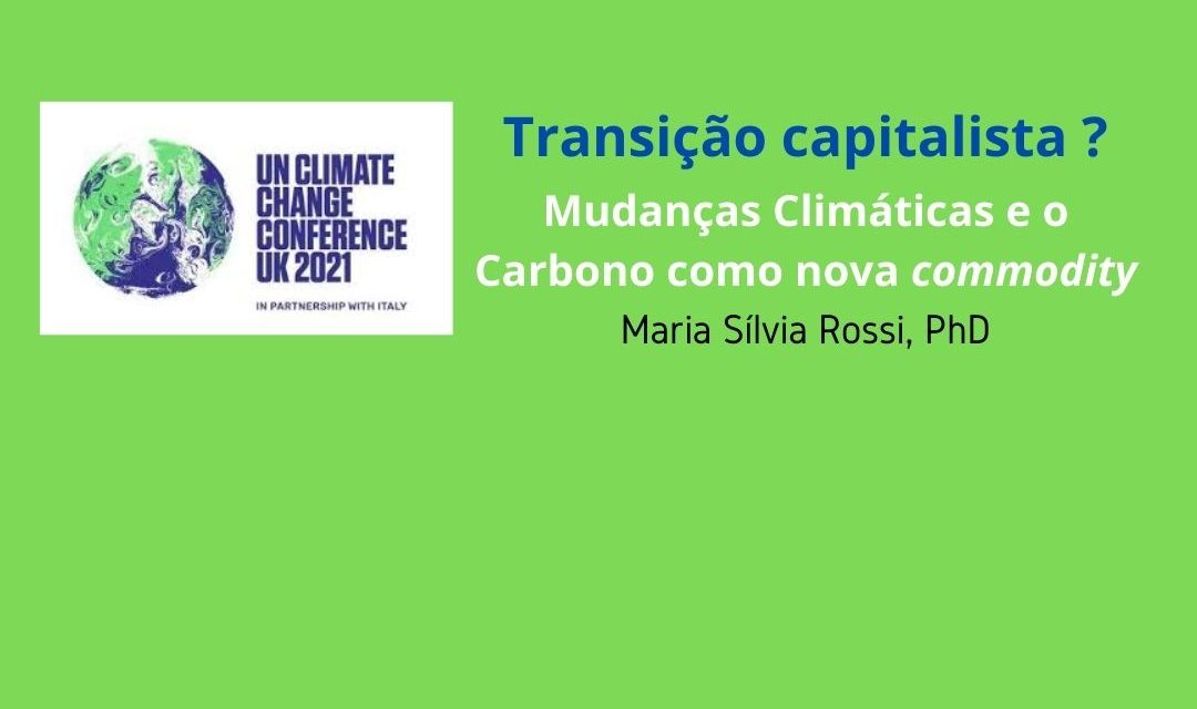 Transição capitalista ?  Mudanças Climáticas e o Carbono como nova commodity