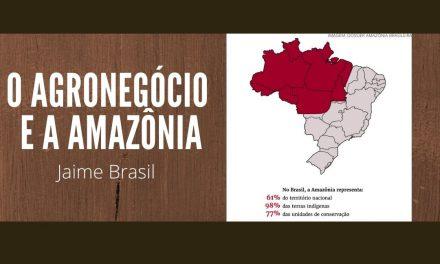 o agronegócio e a amazônia